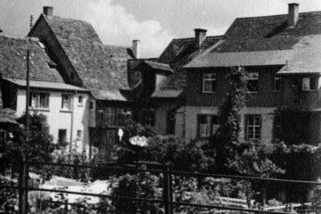 1.42.91-D-110-Käferbergle
