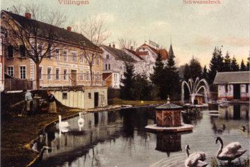 1.42.91-D-262-Schwanenteich-223